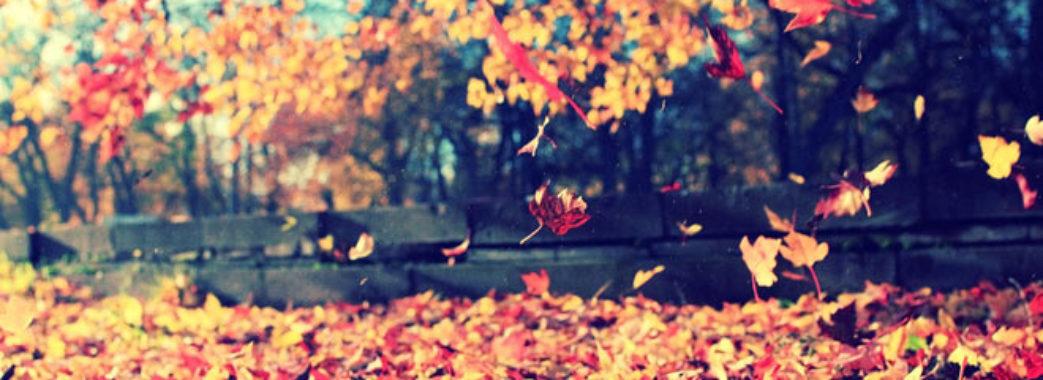 Синоптики розповіли, коли прийде справжня осінь