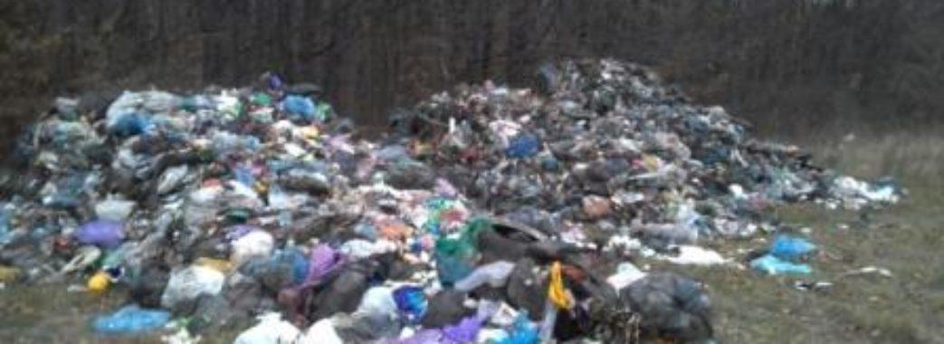 Дрогобицьке сміття знайшли у Перемишлянах