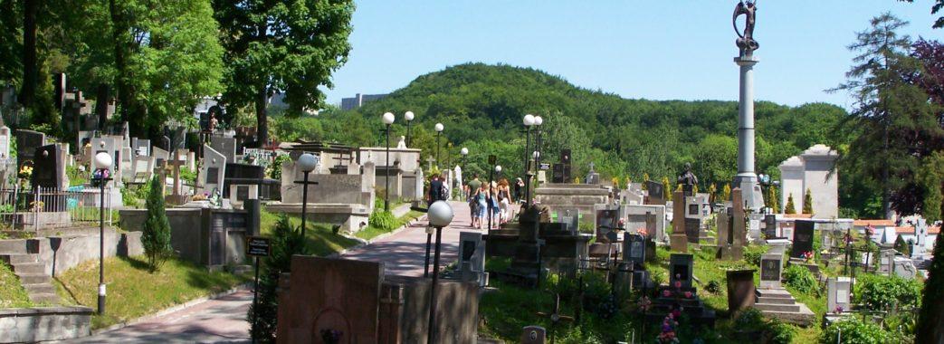 Троє польських студентів намагалися підпалити фаєри на цвинтарі