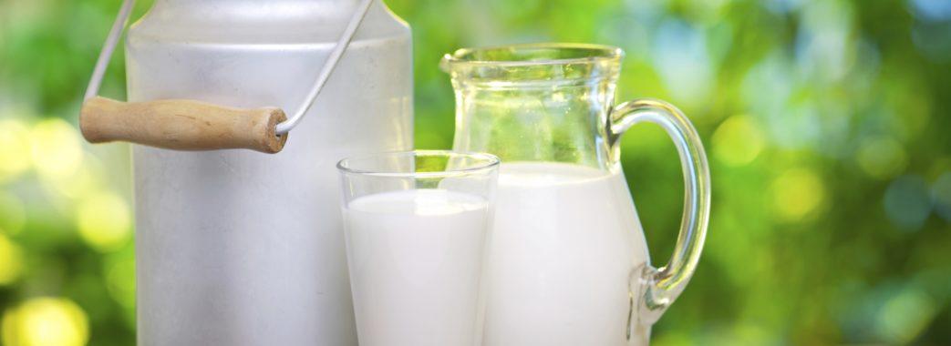 Молоко в раціоні: за чи проти