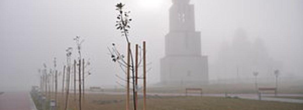 На Сихові поламали дерева біля церкви
