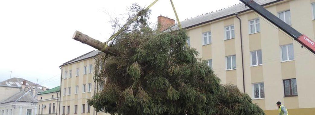 У деяких райцентрах на Львівщині вже стоять новорічні ялинки