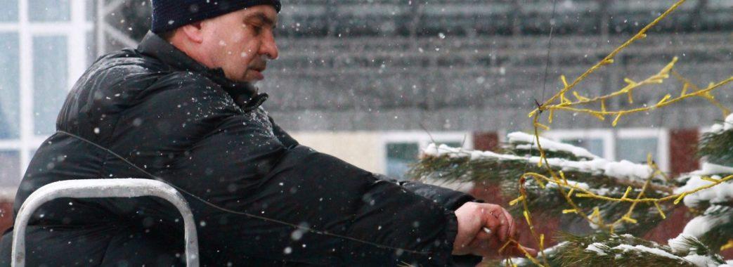 У Червонограді збиткуються над новорічною ялинкою