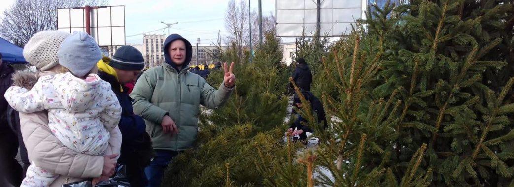 «Мода на живі деревця, як і на натуральні шуби, проходить», – за скільки у Львові можна придбати ялинку