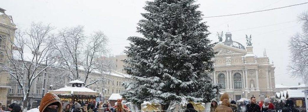 Завтра у Львові засяє центральна ялинка