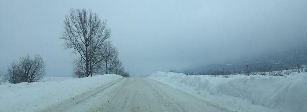 Турку засипало снігом