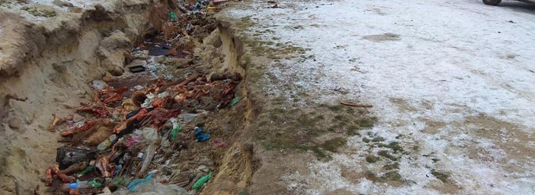 Кров та ратиці: мешканці села Боянець викидають рештки тварин просто біля річки(Фото 18+)