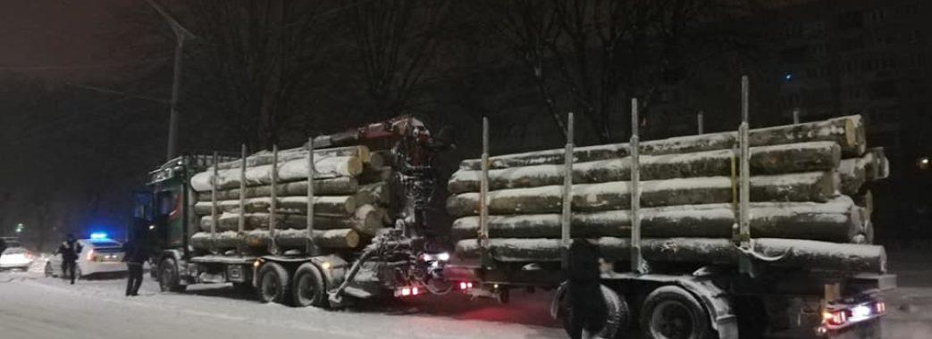 У Львові виявили дві вантажівки з буком без документів