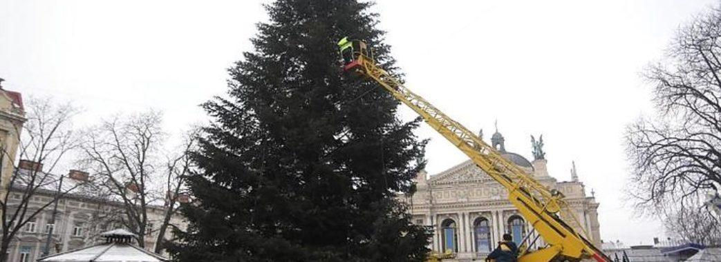 Сьогодні у Львові демонтують центральну ялинку