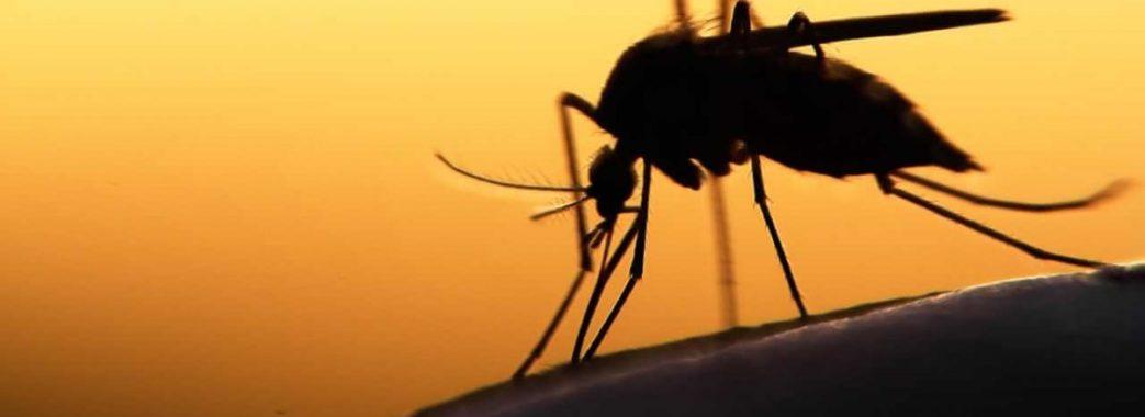 Сьогодні від тропічної малярії помер львівський бізнесмен