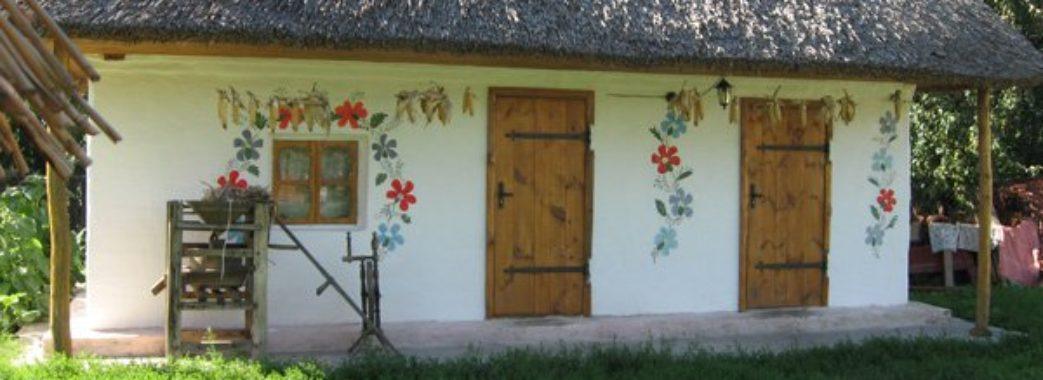 Яворівські активісти хочуть наколядувати багатодітній сім'ї на хату