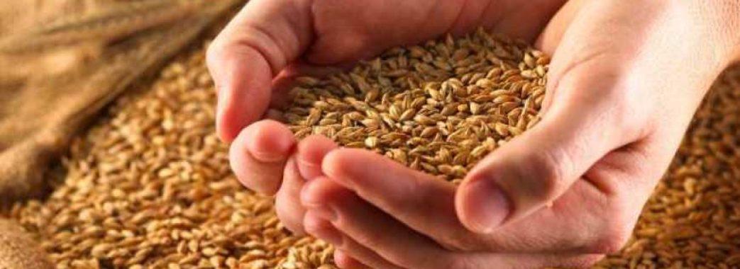 На 150 тисяч гривень мешканець Миколаївщини обважив фермера з Яворівщини, купуючи в нього зерно