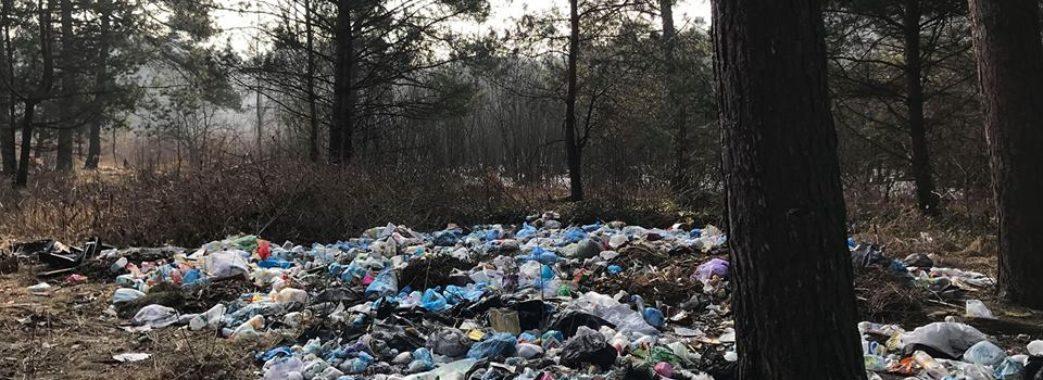 Біля Новояворівська ліс перетворюють на стихійне звалище