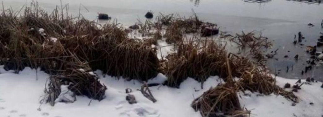 На Сколівщині під мостом знайшли міну