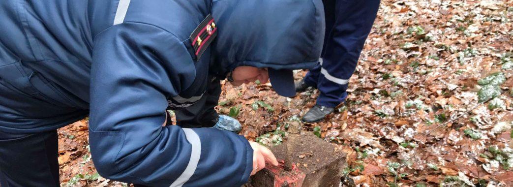 На околиці Винник у двох металевих контейнерах знайшли 50 кілограм ртуті