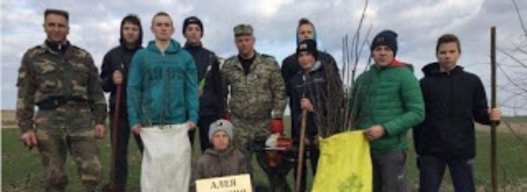 На Бущині під керівництвом учасника ООС висадили горіхову алею