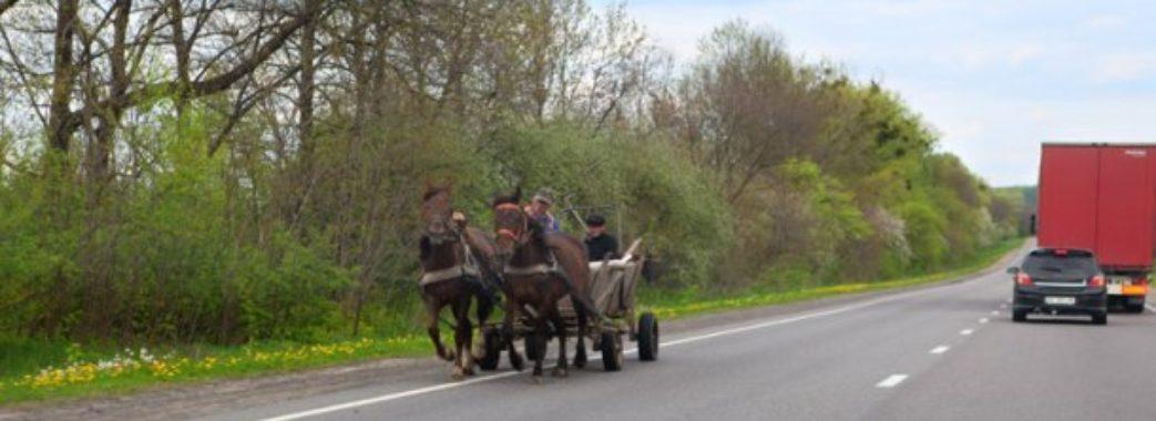 На Жовківщині «вісімка» в'їхала у підводу з кіньми