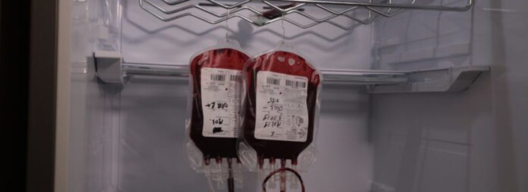 Банк крові для собак запрацював у Львові