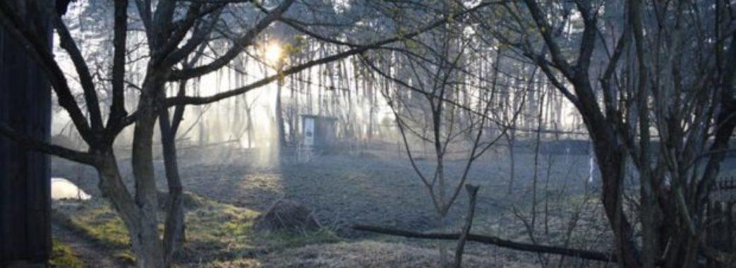 На Сокальщині через підпал сухої трави згоріло 9 будинків