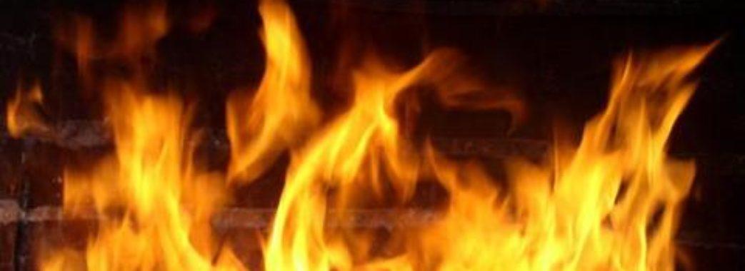 """""""Сам кинувся у вогонь, аби врятувати живність»: на Радехівщині живцем згоріли тварини"""