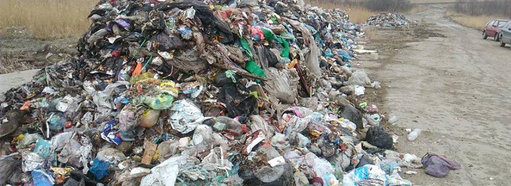 У Дрогобичі порушників оштрафували за сміття біля заправки