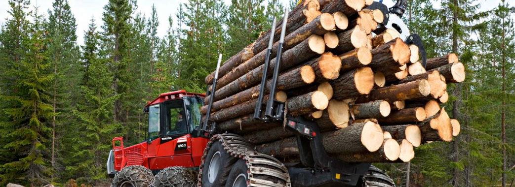 «За 6 зрубаних дерев можуть посадити»: депутати допрацювали закон про збереження лісів