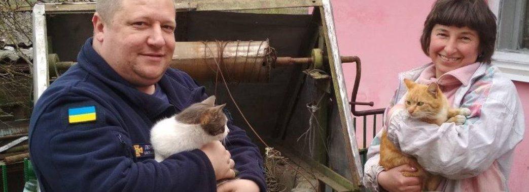 На Жидачівщині рятувальники витягали з криниці двох котів