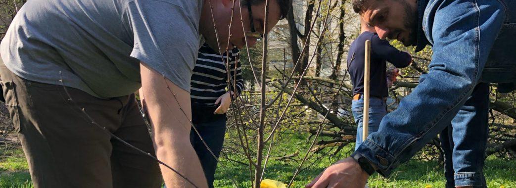 «Спочатку садимо дерева, а потім,може, за когось іншого візьмемось», – активісти про акцію на Горбачевського