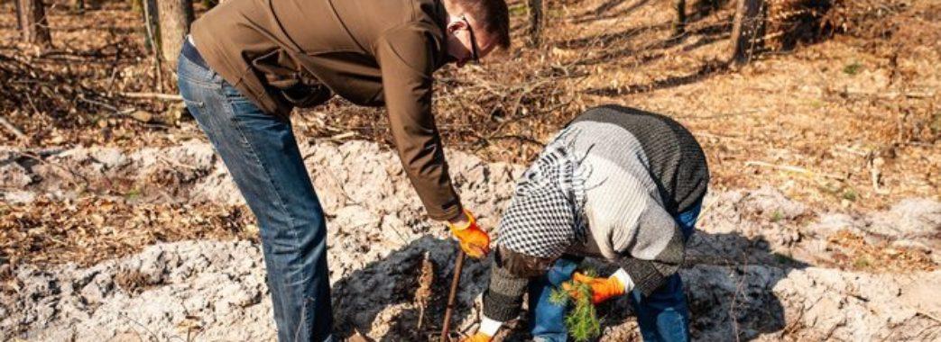 За 8 годин 500 волонтерів висадили 77 тисяч дерев і встановили рекорд