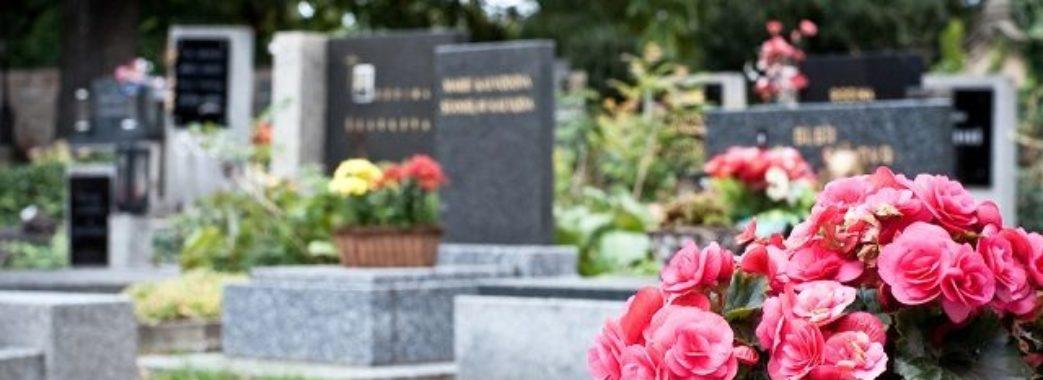 """""""Люди зробили з цвинтаря показ моди"""", – отець Василь Попович"""