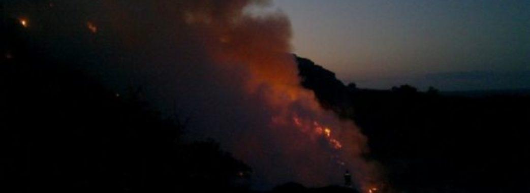 Біля Грибовицького сміттєзвалища знову горіло: селяни підпалили суху траву