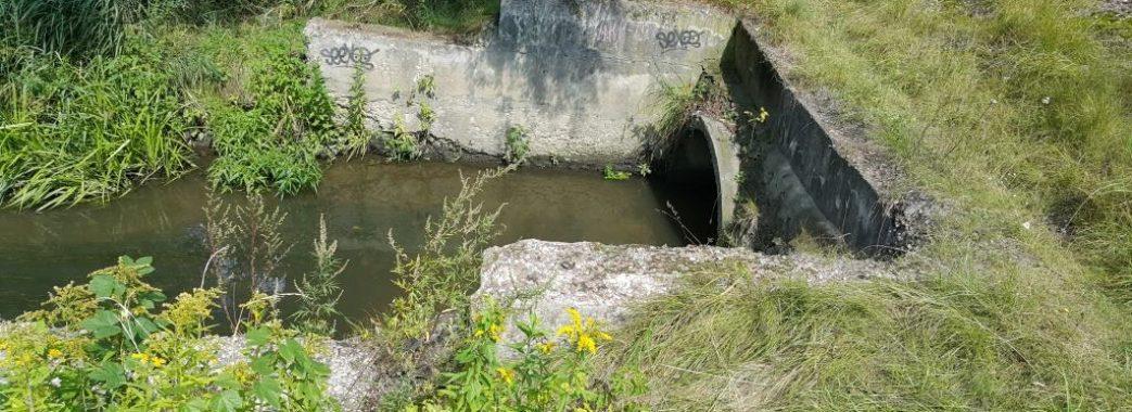 На Бущині втопився 26-річний Юрій Боярський
