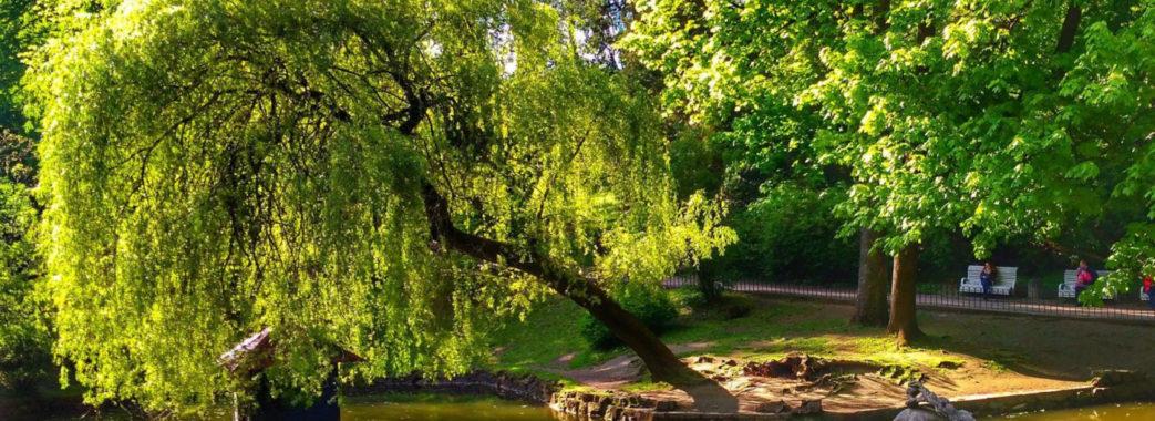 Мер Львова створив робочу групу щодо розвитку трьох міських парків