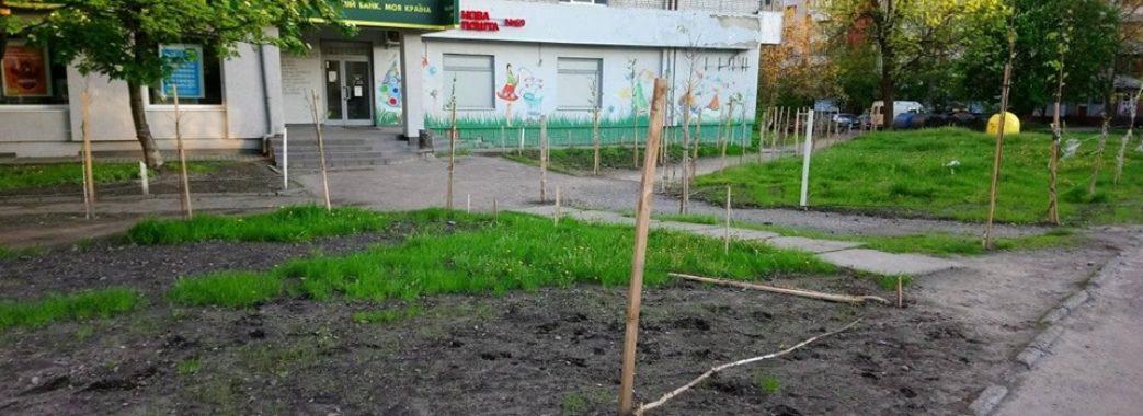 У Львові невідомі знищили 29 молодих дерев