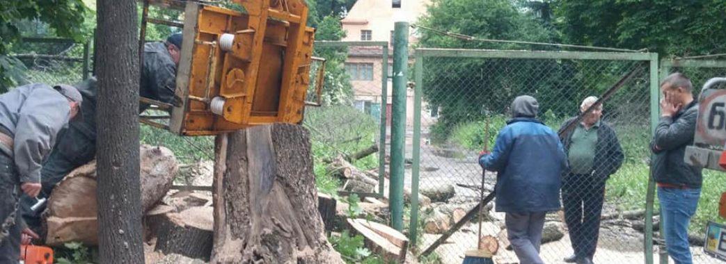 На місці, де обіцяли сквер, вирубали дерева