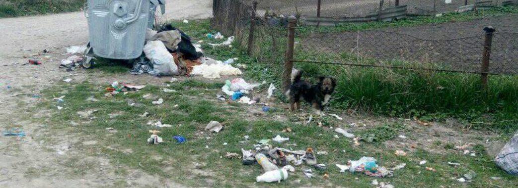 «Всі бояться екологічної катастрофи»: на Миколаївщині сміттєва криза