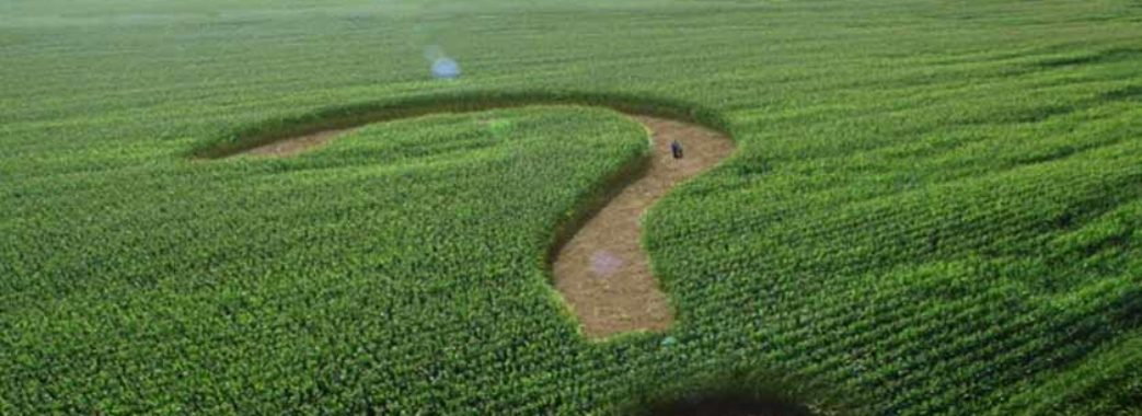 В Зеленського планують скасувати мораторій на продаж землі до кінця 2019 року