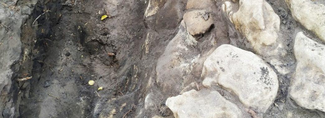 Біля Винник знайшли амфору, якій 5 тисяч років