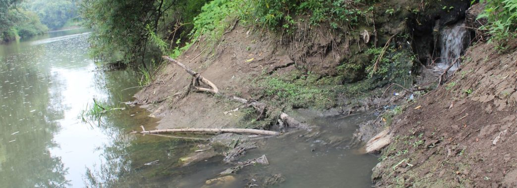 У річку Дністер зливають нечистоти: підозрюють Миколаївський цементний завод і місцеву бойню