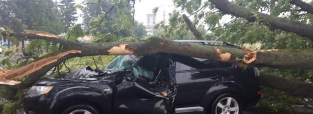 «Буря 5 хвилин тривала, та здавалось, що то кінець світу», – мешканці села на Стрийщині