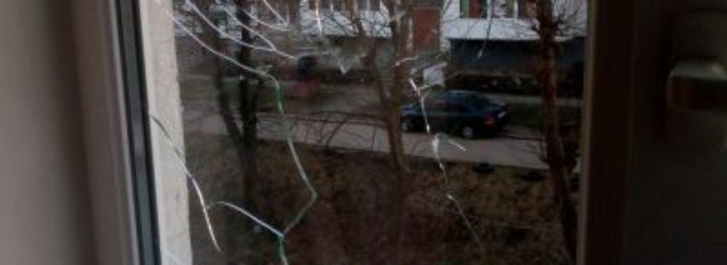 Житло мешканки Нового Роздолу обстрілювали із пневматичної гвинтівки та трощили двері сокирою