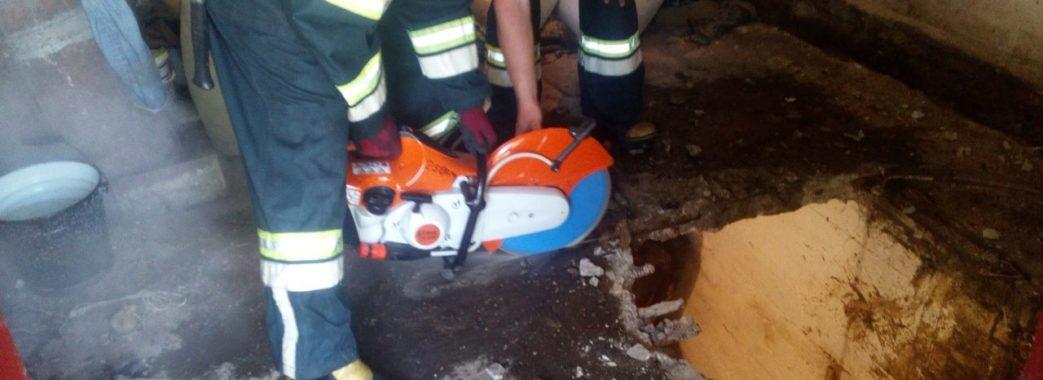 На Пустомитівщині рятувальники три години витягали корову, яка впала у підвал