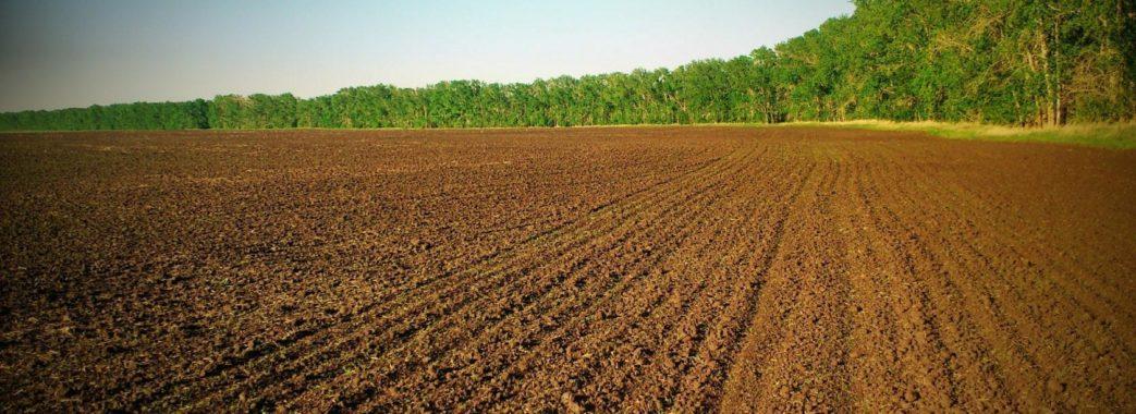 Земельну реформу в Україні реалізують вже цього року