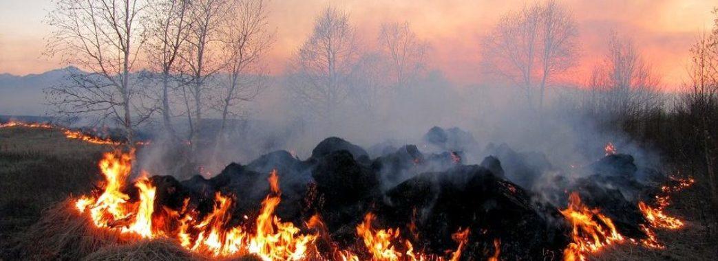 До 2 вересня на Львівщині буде надзвичайний рівень пожежної небезпеки