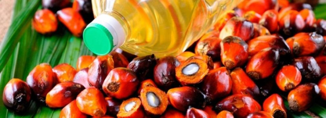 """""""Не звинувачуйте в усіх бідах пальмову олію"""": Супрун про шкоду пальмової олії"""