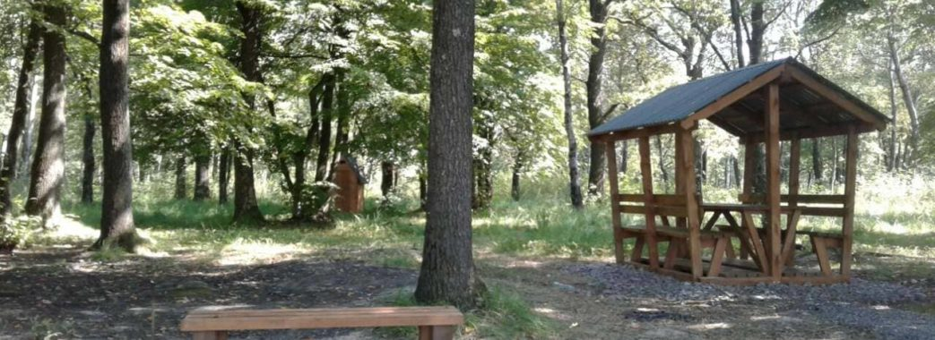 Між Дрогобицьким і Стрийським районами з'явилася нова локація для активного відпочинку