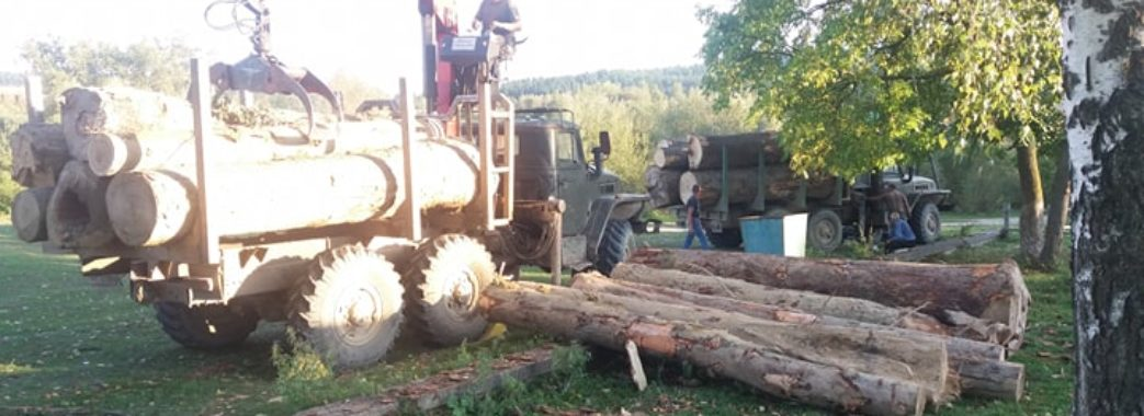 «Коли влада не працює, людям доводиться діяти самим»: на Старосамбірщині черговий раз затримали крадіїв лісу