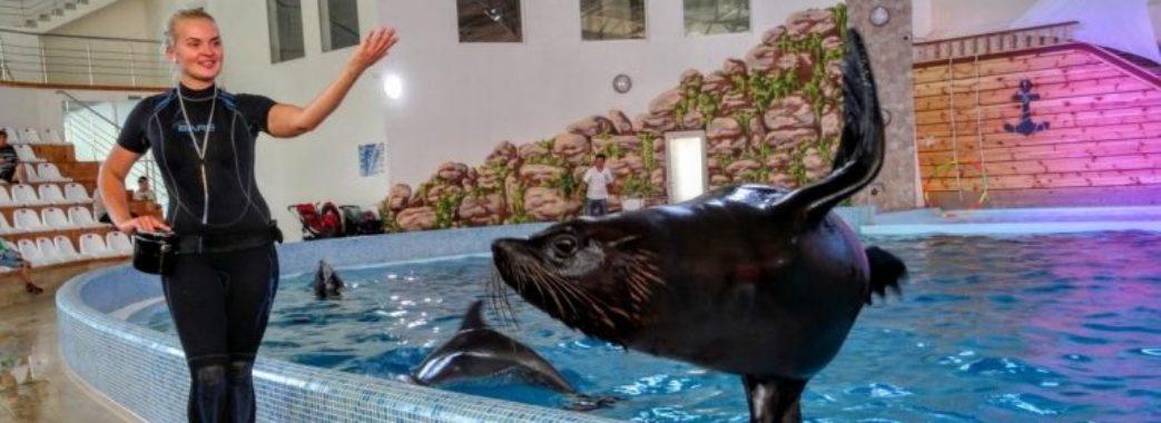 Трускавецький дельфінарій оштрафували через нелегальну музику