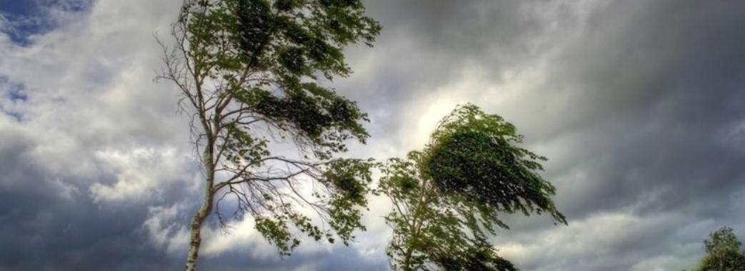 Сьогодні синоптики прогнозують сильний вітер