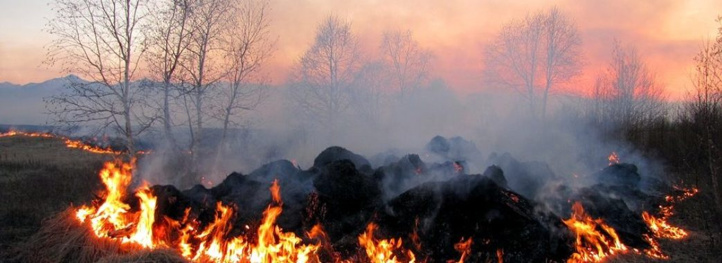 Синоптики попереджають про надзвичайний рівень пожежної небезпеки